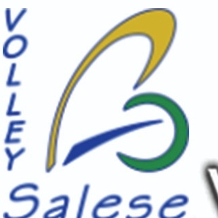Volley Salese